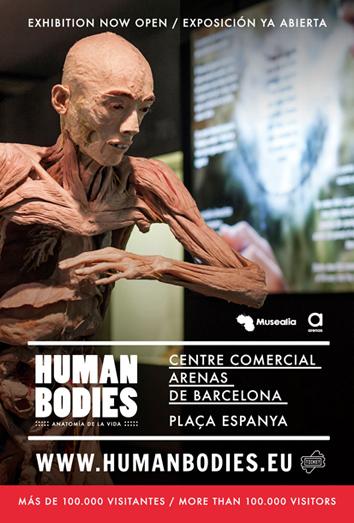 Exposició Human Bodies: Anatomia de la Vida | Federació Catalana de Ball Esportiu