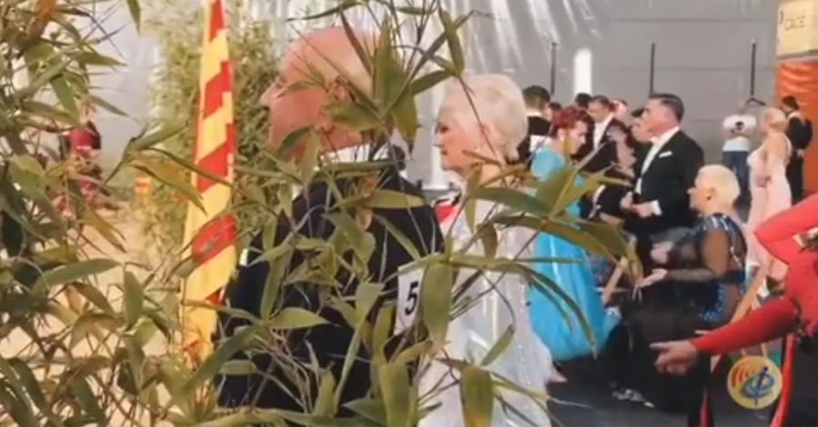 (Vídeo) Campionats de Catalunya Estil Internacional 2019